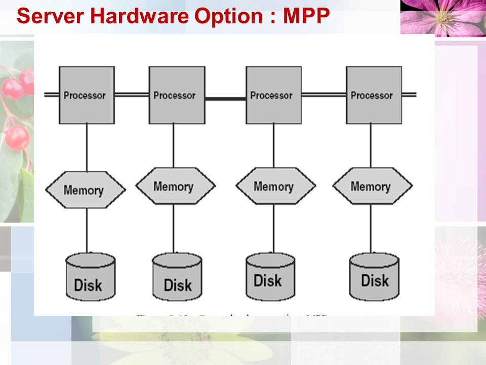 Server Hardware Option : MPP