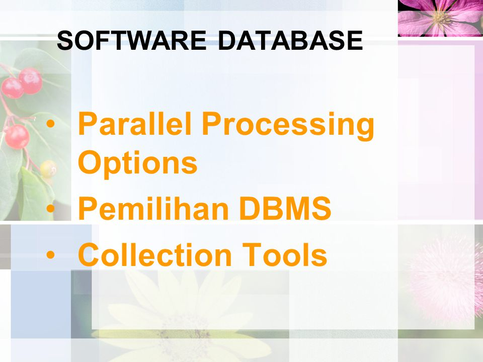 Parallel Processing Options Pemilihan DBMS Collection Tools