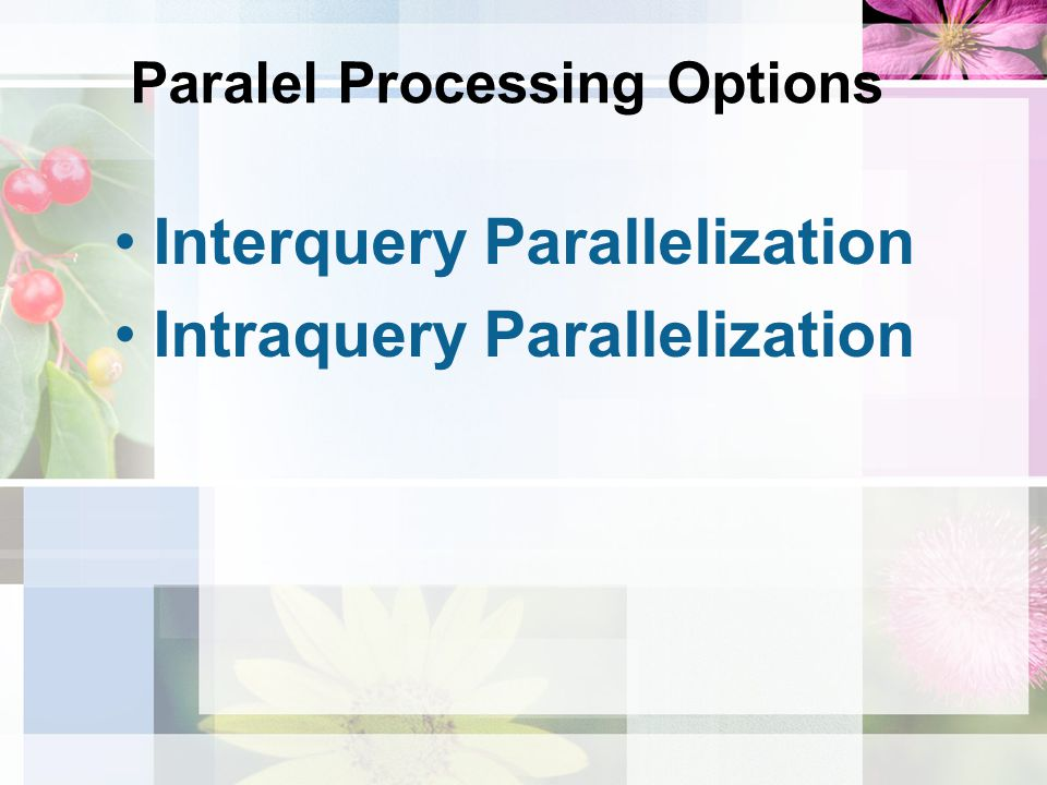 Paralel Processing Options