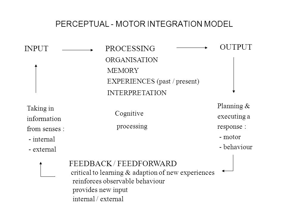 PERCEPTUAL - MOTOR INTEGRATION MODEL