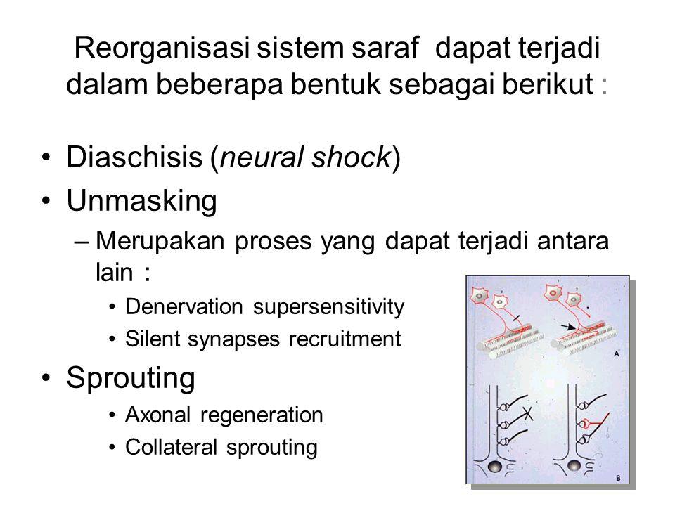 Diaschisis (neural shock) Unmasking