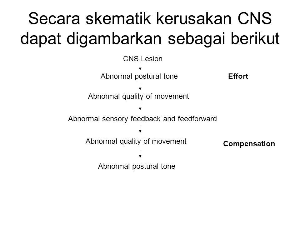 Secara skematik kerusakan CNS dapat digambarkan sebagai berikut