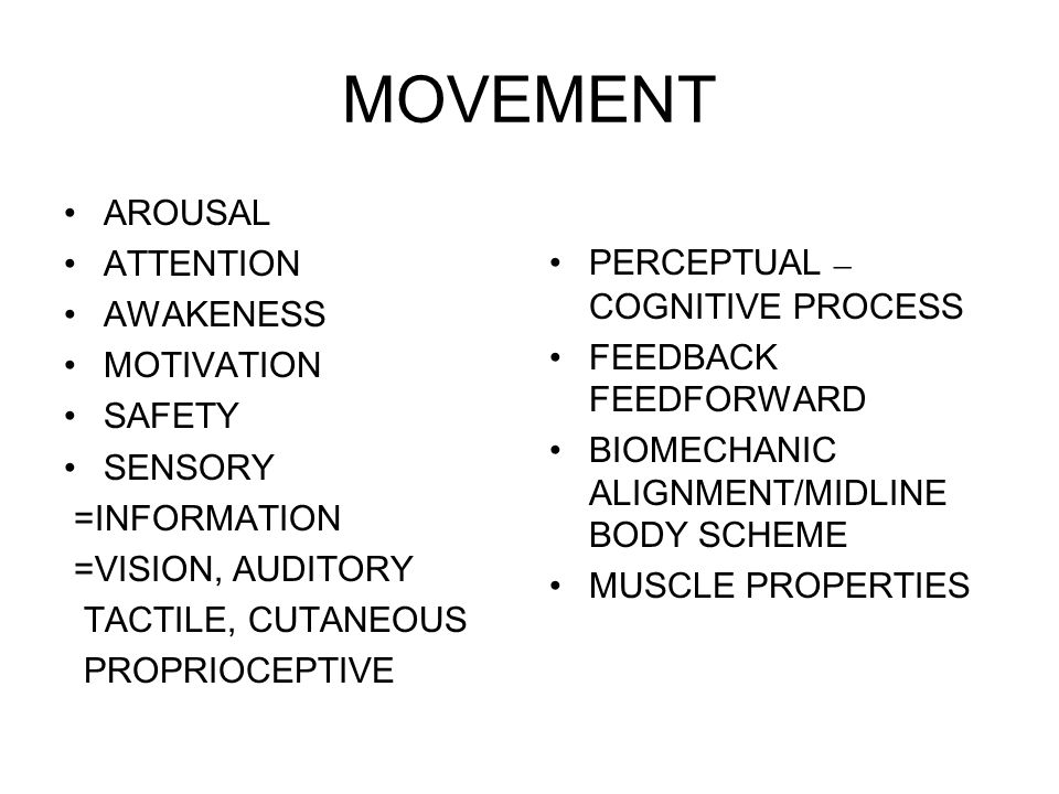 MOVEMENT AROUSAL ATTENTION AWAKENESS MOTIVATION SAFETY SENSORY