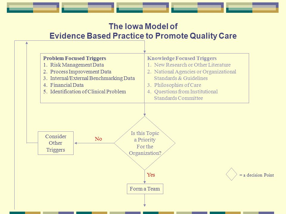 The Iowa Model of Evidence Based Practice to Promote Quality Care