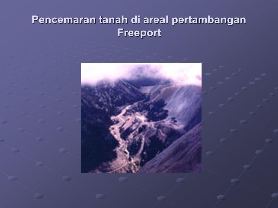 Pencemaran tanah di areal pertambangan Freeport