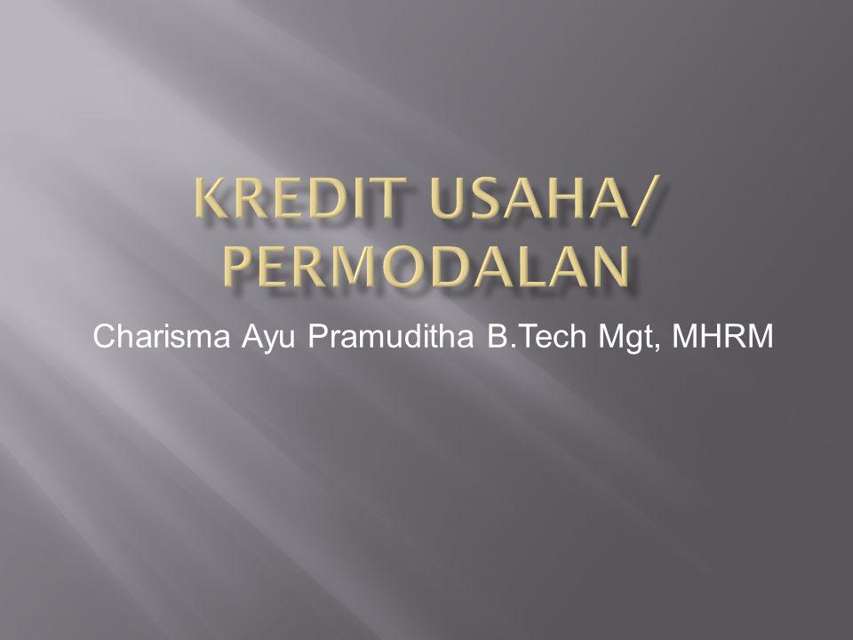 Kredit usaha/ permodalan