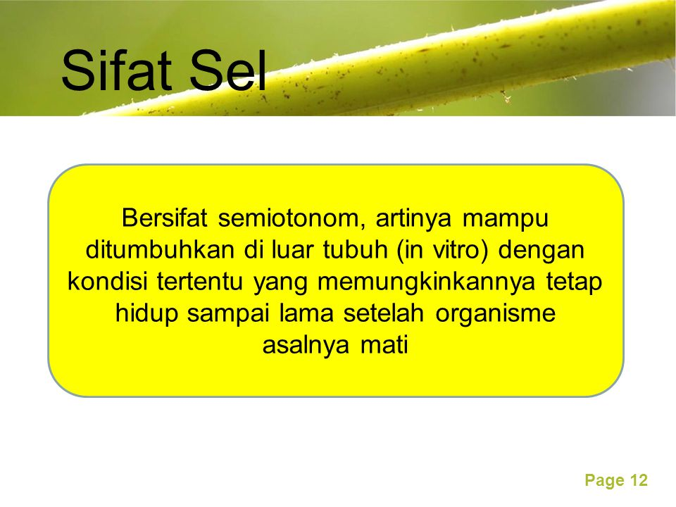 Sifat Sel