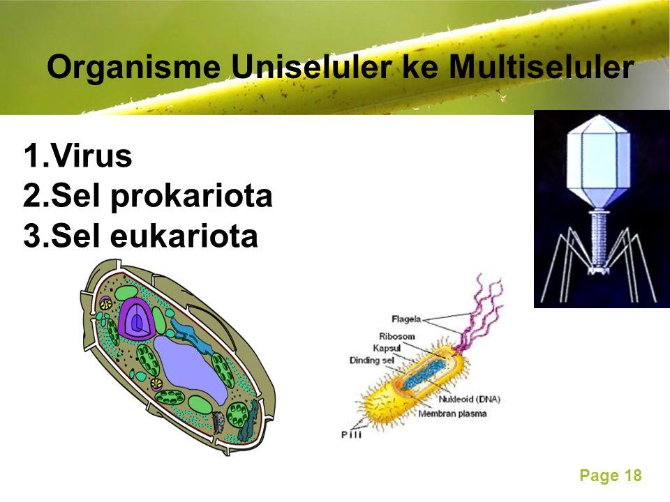 Organisme Uniseluler ke Multiseluler