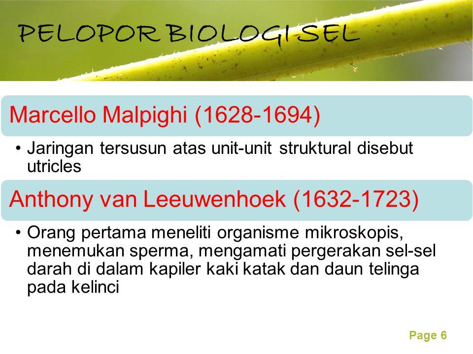 PELOPOR BIOLOGI SEL Marcello Malpighi (1628-1694)