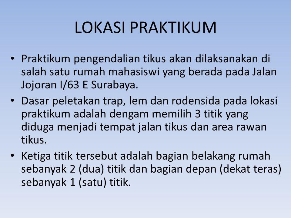 LOKASI PRAKTIKUM Praktikum pengendalian tikus akan dilaksanakan di salah satu rumah mahasiswi yang berada pada Jalan Jojoran I/63 E Surabaya.