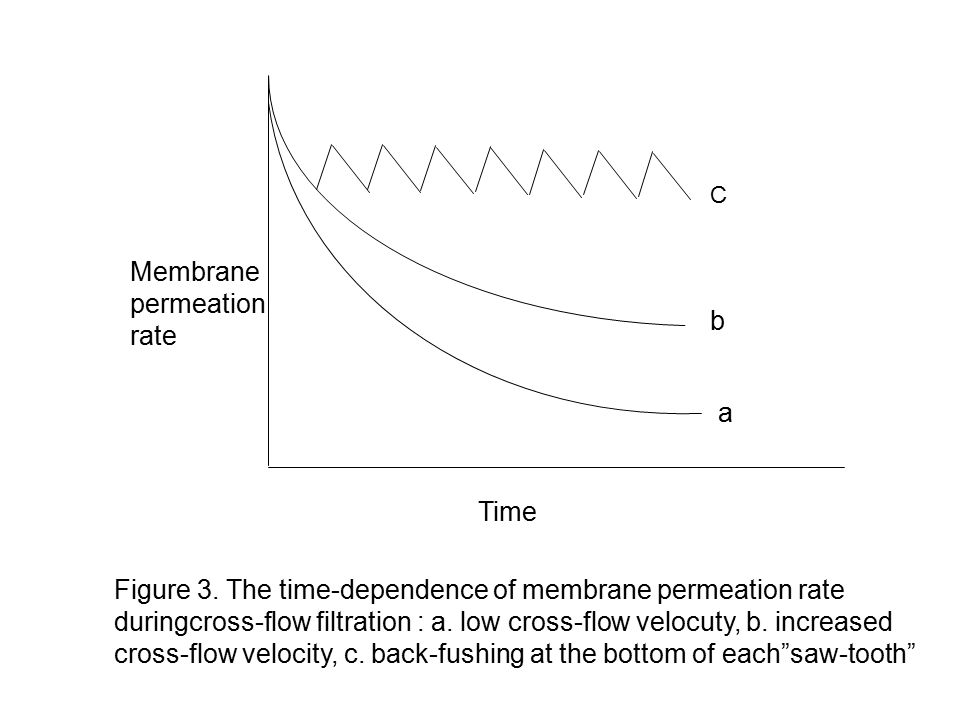 Membrane permeation rate