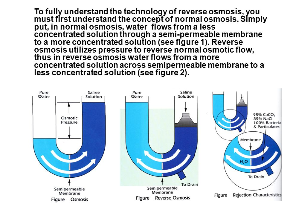 To fully understand the technology of reverse osmosis, you must first understand the concept of normal osmosis.