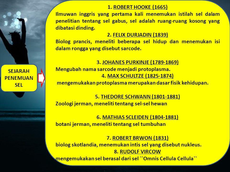 1. ROBERT HOOKE (1665)