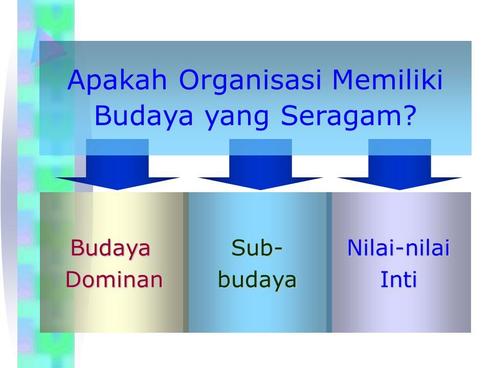 Apakah Organisasi Memiliki Budaya yang Seragam