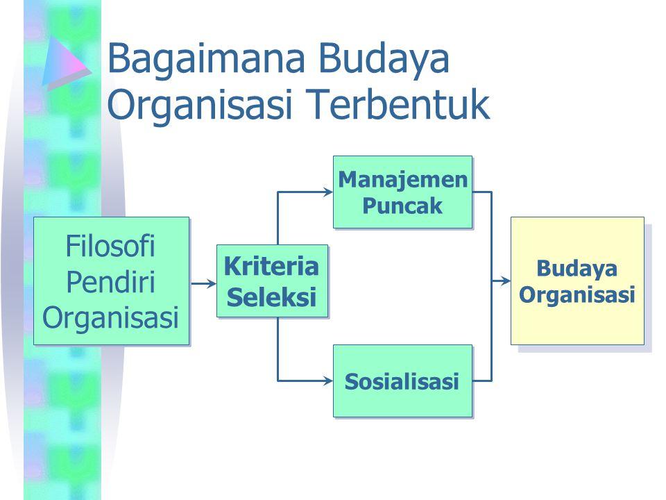 Bagaimana Budaya Organisasi Terbentuk