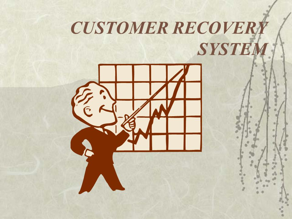 CUSTOMER RECOVERY SYSTEM