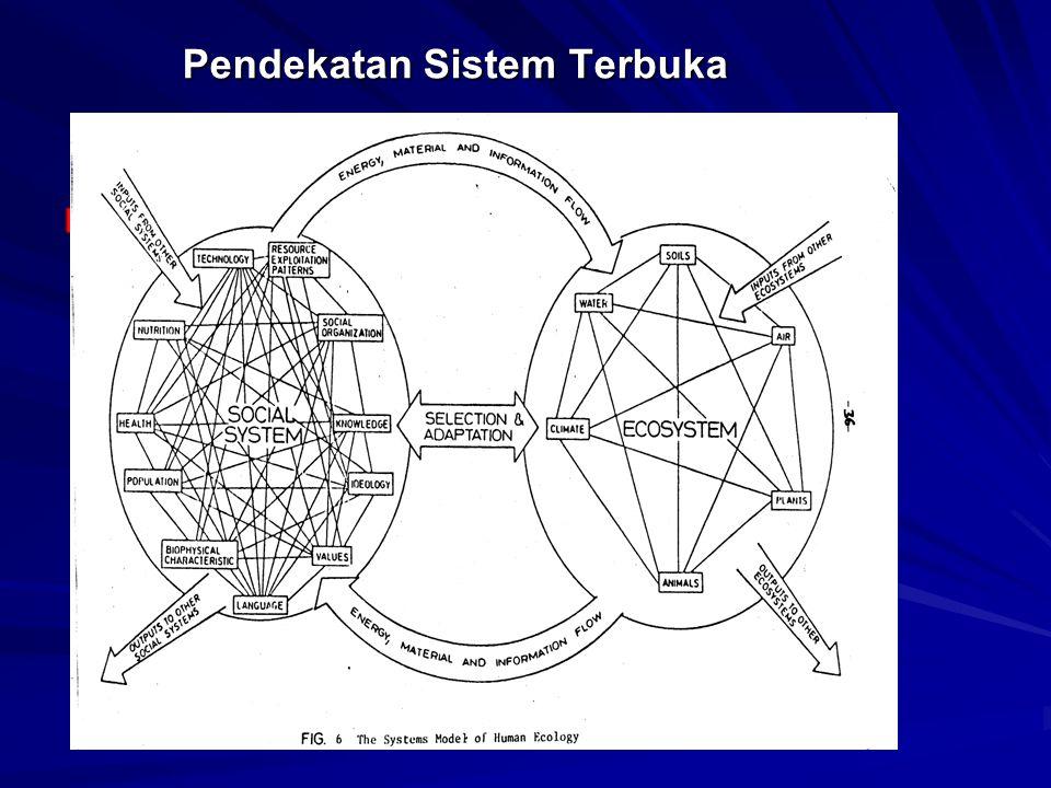 Pendekatan Sistem Terbuka