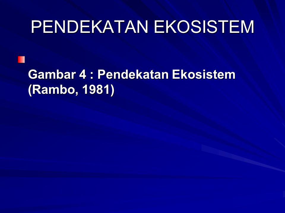 PENDEKATAN EKOSISTEM Gambar 4 : Pendekatan Ekosistem (Rambo, 1981)