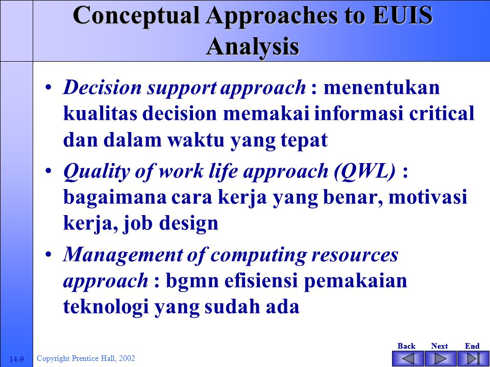 Conceptual Approaches to EUIS Analysis