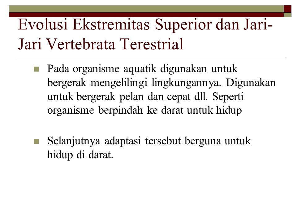 Evolusi Ekstremitas Superior dan Jari-Jari Vertebrata Terestrial
