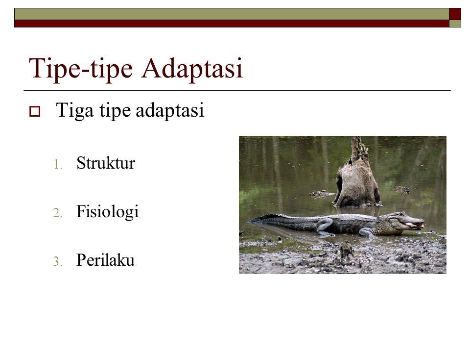 Tipe-tipe Adaptasi Tiga tipe adaptasi Struktur Fisiologi Perilaku