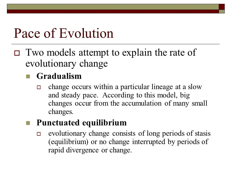 Pace of Evolution Two models attempt to explain the rate of evolutionary change. Gradualism.