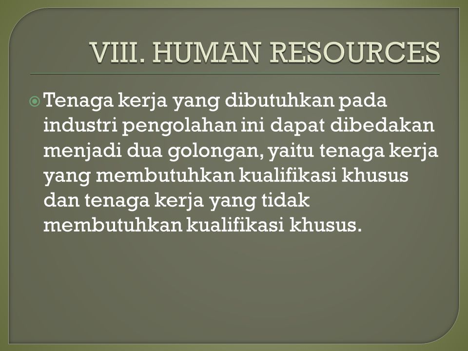 VIII. HUMAN RESOURCES