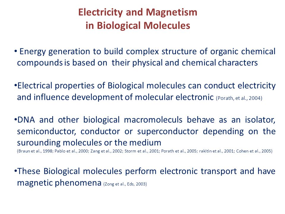 Electricity and Magnetism in Biological Molecules