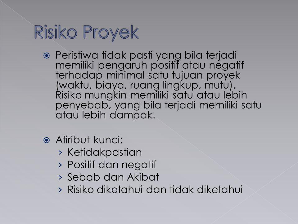 Risiko Proyek