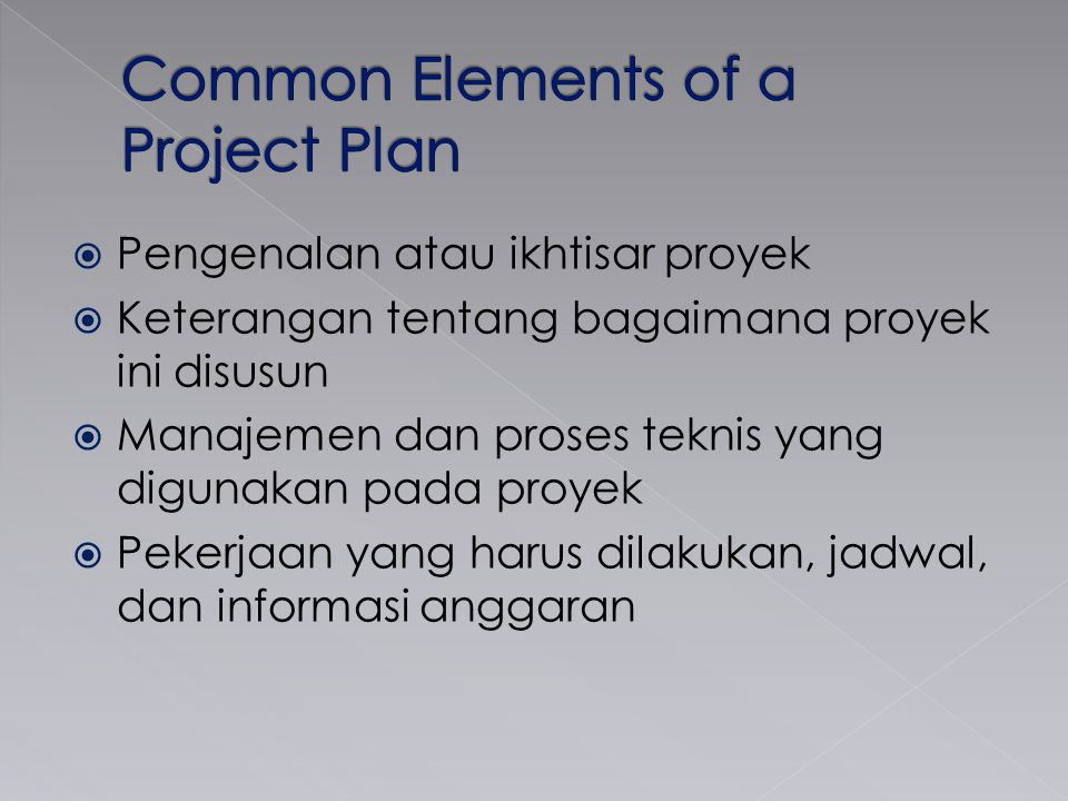 Common Elements of a Project Plan
