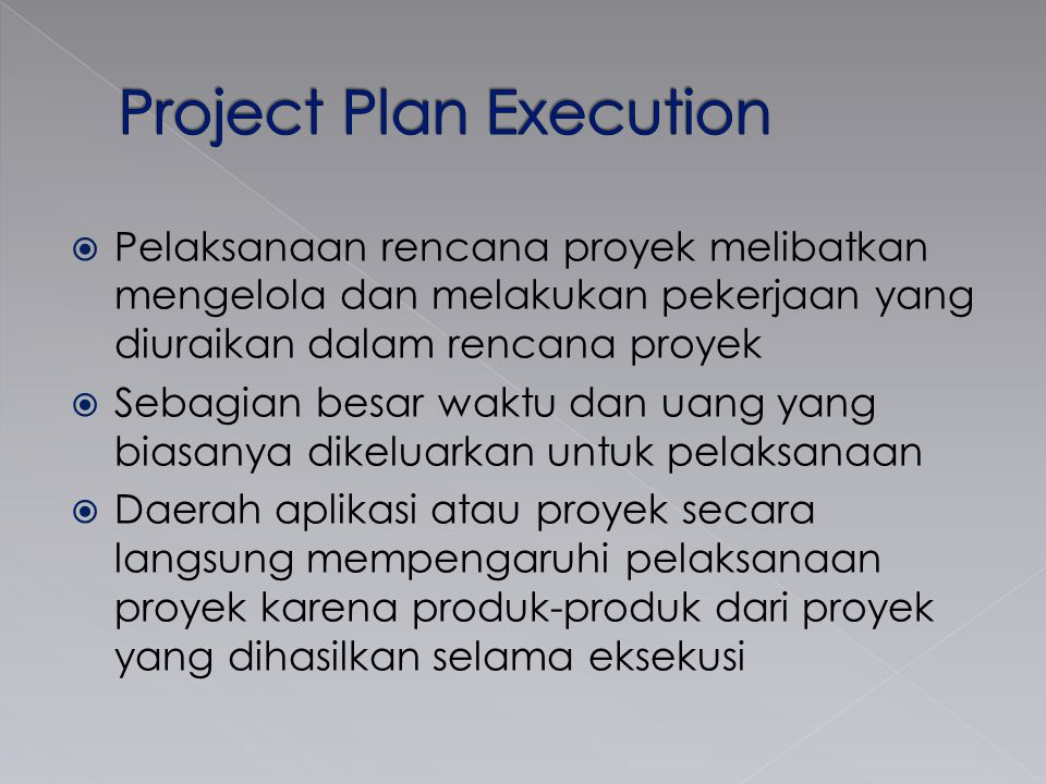 Project Plan Execution