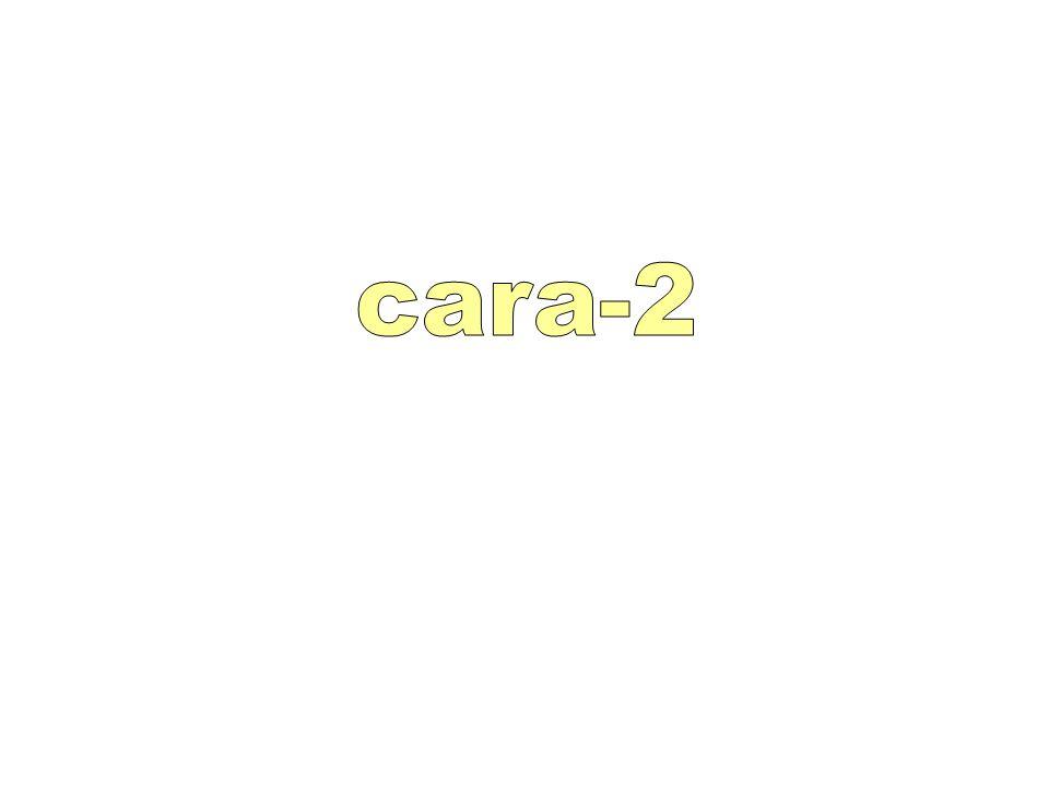 cara-2