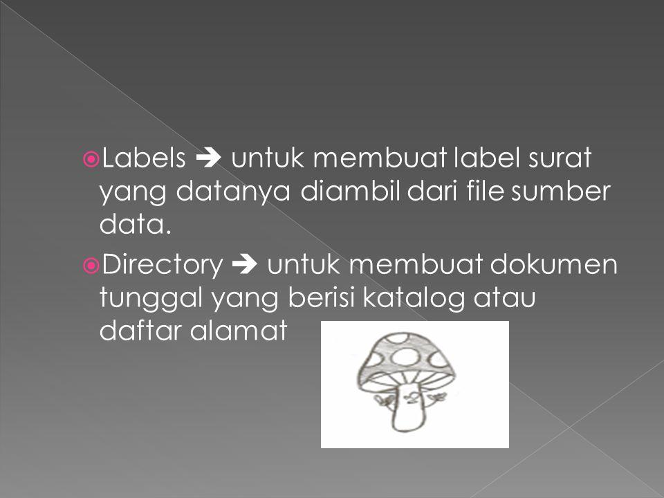 Labels  untuk membuat label surat yang datanya diambil dari file sumber data.