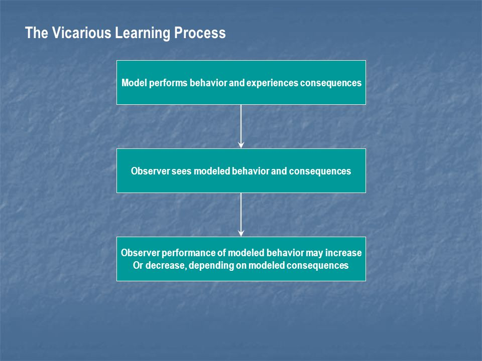 The Vicarious Learning Process