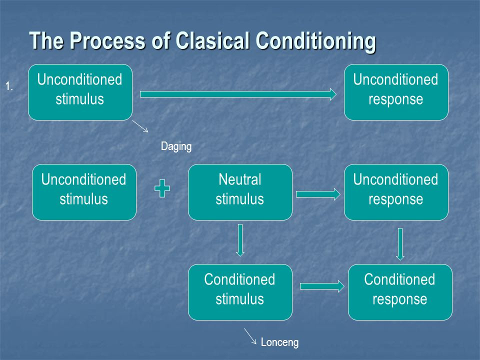 The Process of Clasical Conditioning