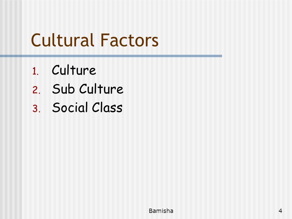 Cultural Factors Culture Sub Culture Social Class Bamisha