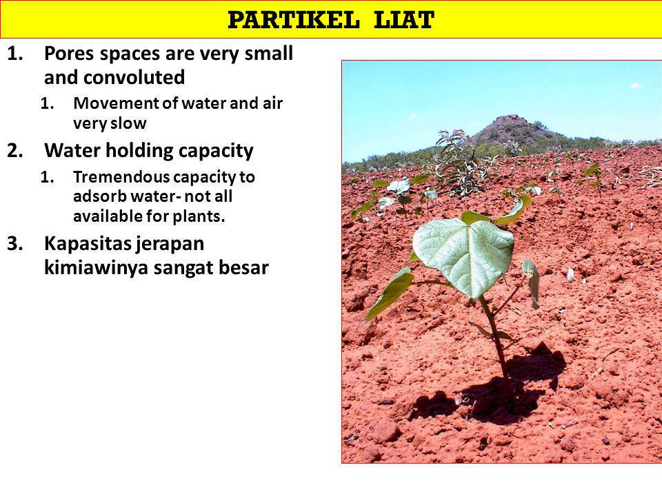 PARTIKEL LIAT Pores spaces are very small and convoluted