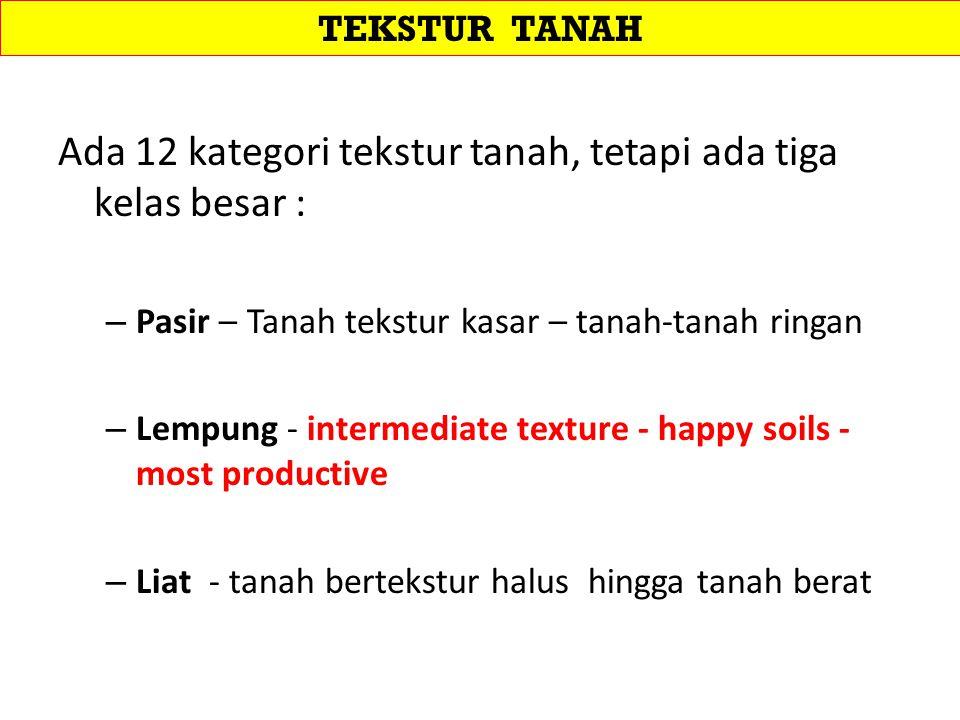 Ada 12 kategori tekstur tanah, tetapi ada tiga kelas besar :