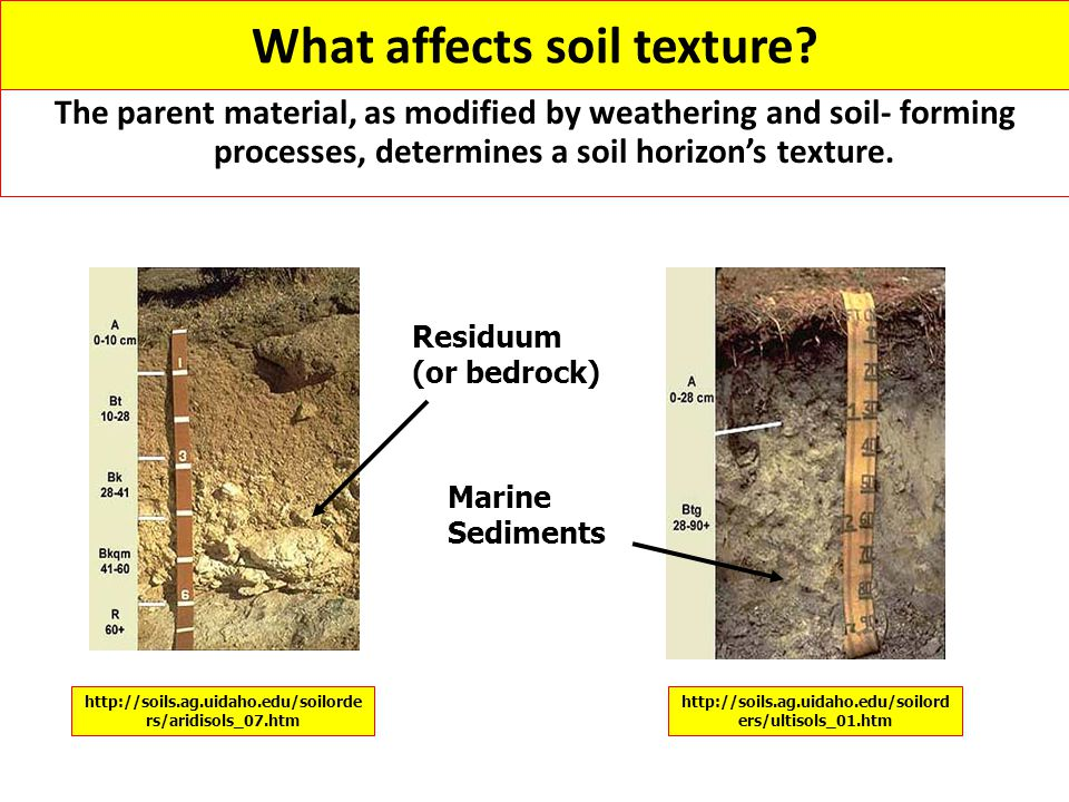 What affects soil texture
