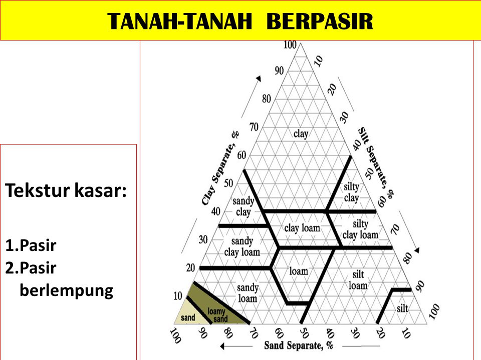 TANAH-TANAH BERPASIR Tekstur kasar: Pasir Pasir berlempung