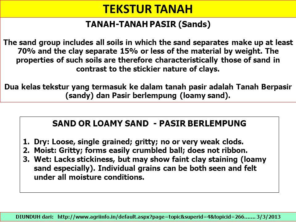 TANAH-TANAH PASIR (Sands) SAND OR LOAMY SAND - PASIR BERLEMPUNG