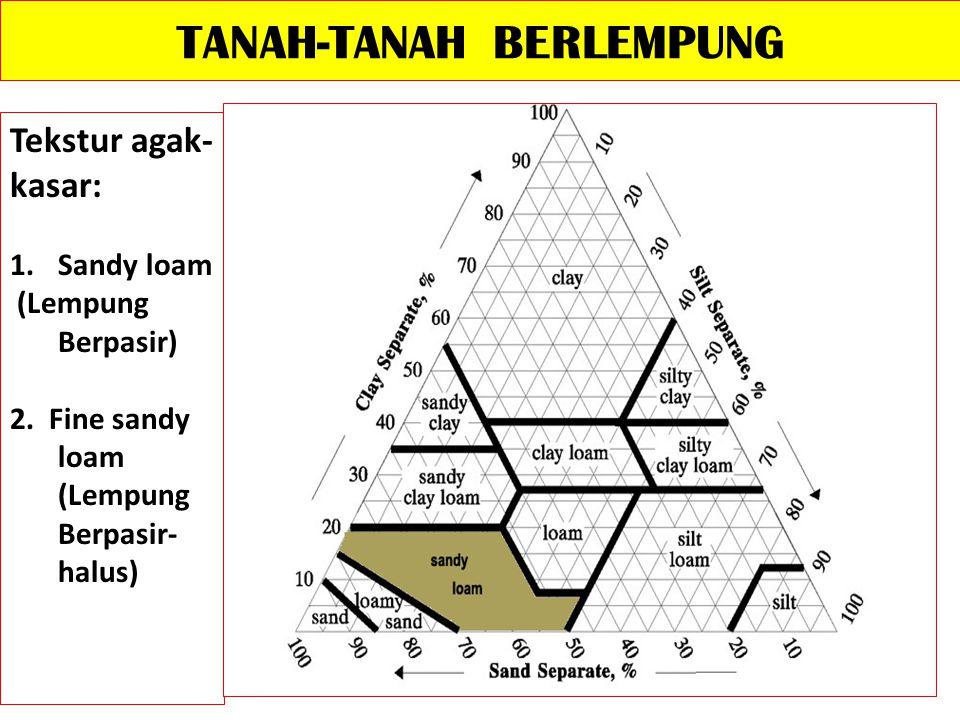 TANAH-TANAH BERLEMPUNG