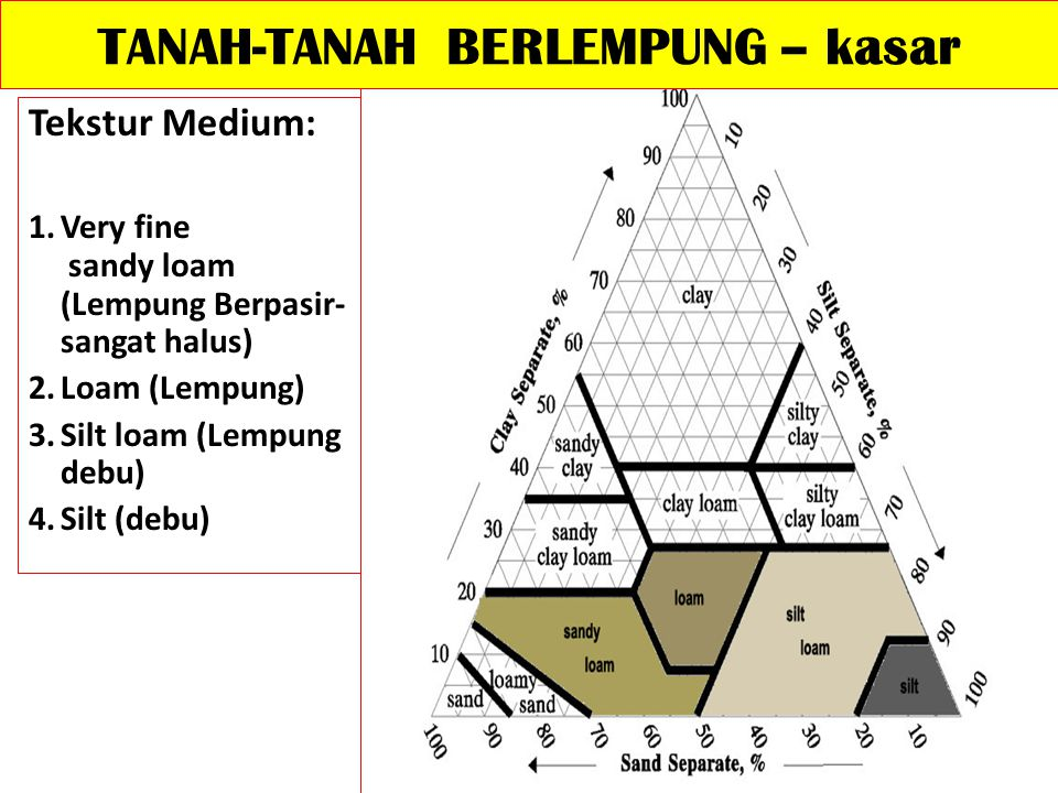 TANAH-TANAH BERLEMPUNG – kasar