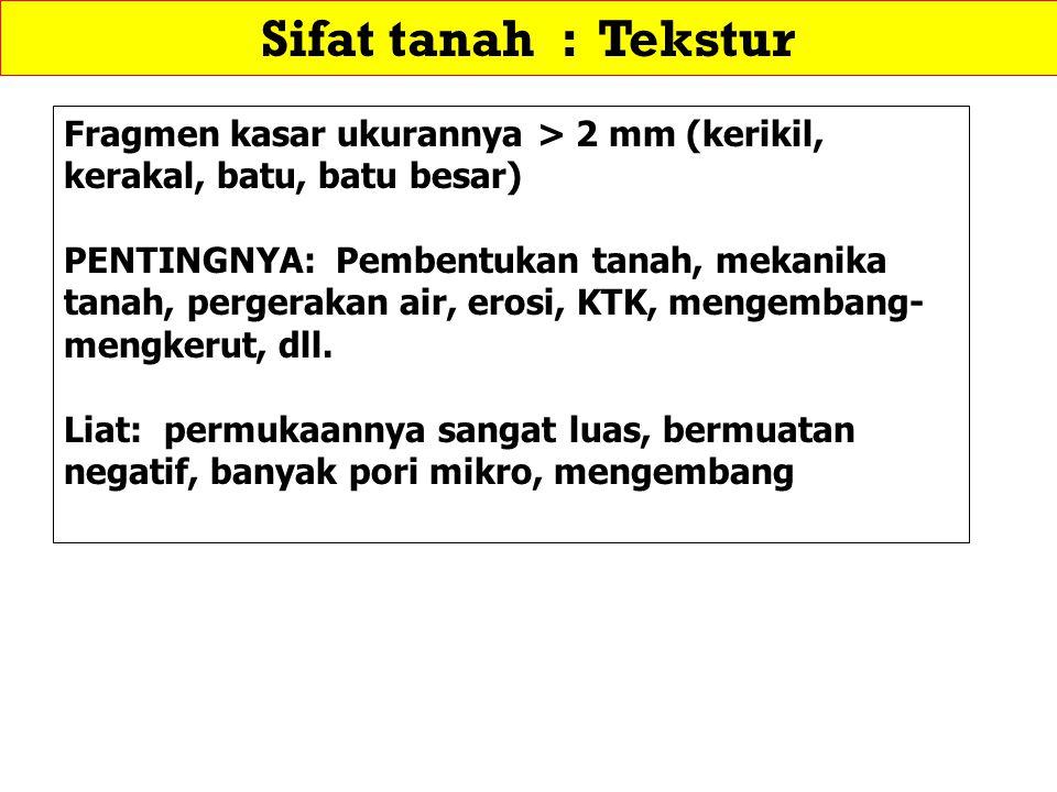 Sifat tanah : Tekstur Fragmen kasar ukurannya > 2 mm (kerikil, kerakal, batu, batu besar)
