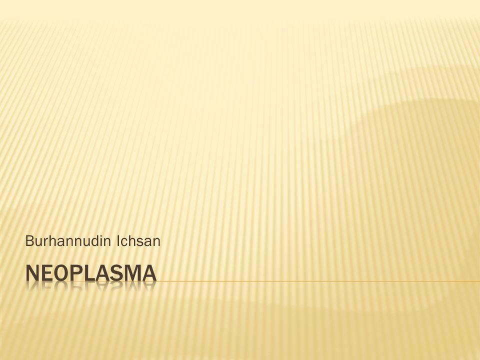 Burhannudin Ichsan Neoplasma