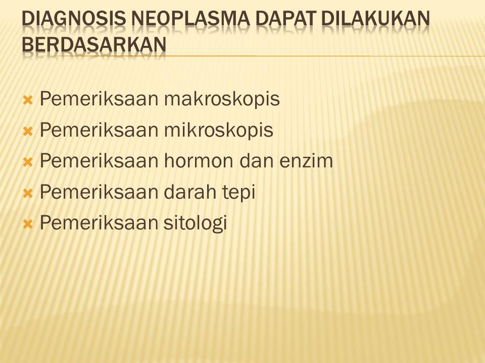 Diagnosis neoplasma dapat dilakukan berdasarkan