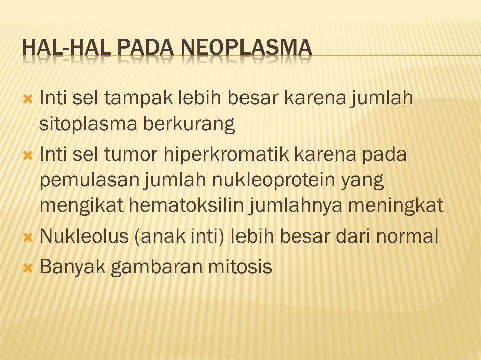 Hal-hal pada neoplasma