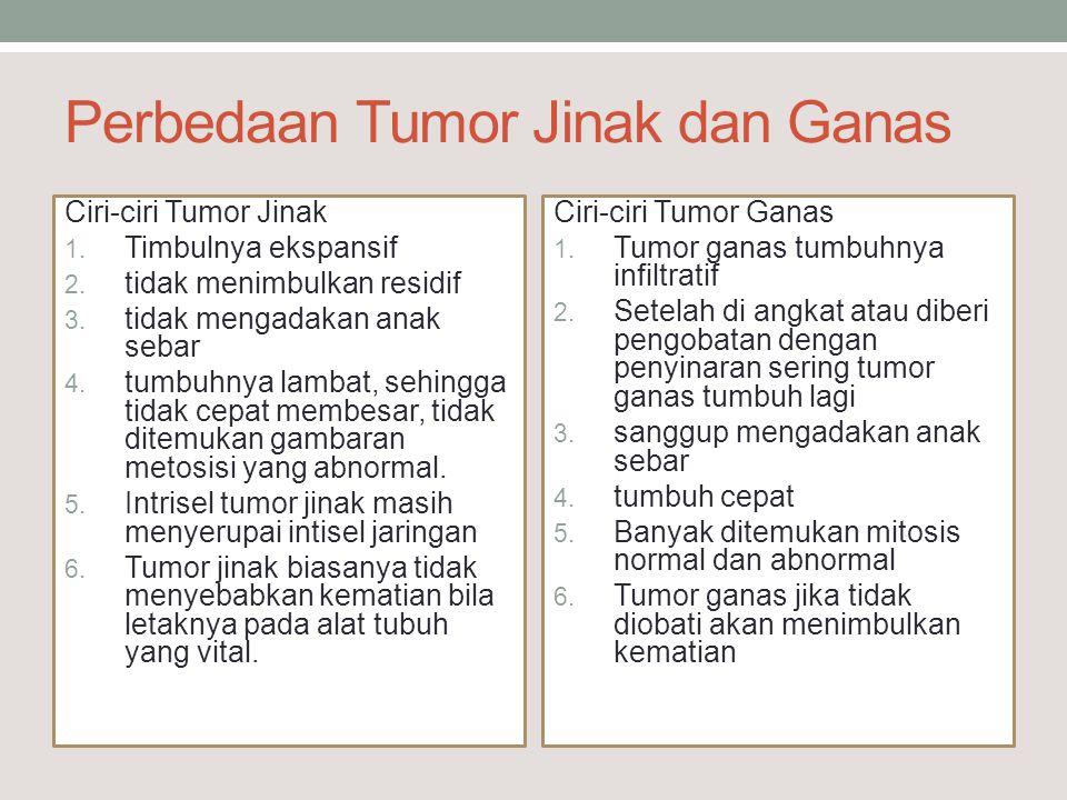 Perbedaan Tumor Jinak dan Ganas