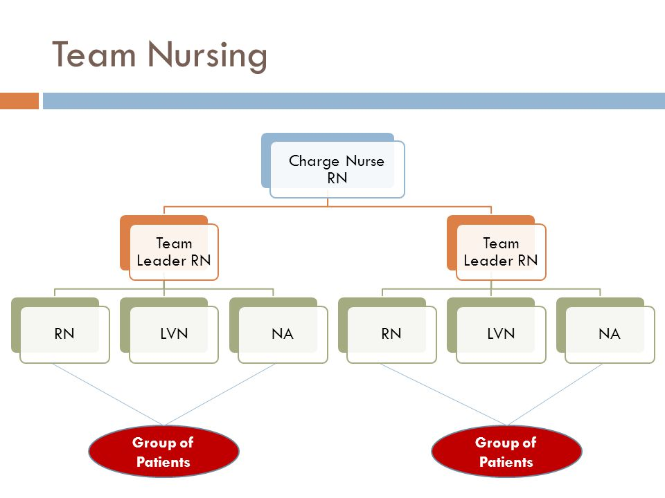 Team Nursing Group of Patients Group of Patients Charge Nurse RN