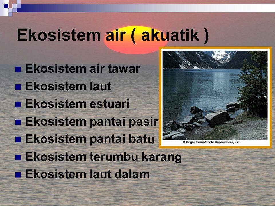 Ekosistem air ( akuatik )